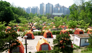 江东绿道家族露营场