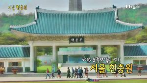 Seoul National Cemetery: Sacred Ground for Korean Patriots and Martyrs for Over 60 Years
