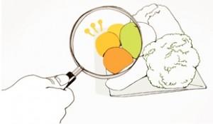 """首尔市制定了全国首个""""环境友好型食材供应标准"""""""