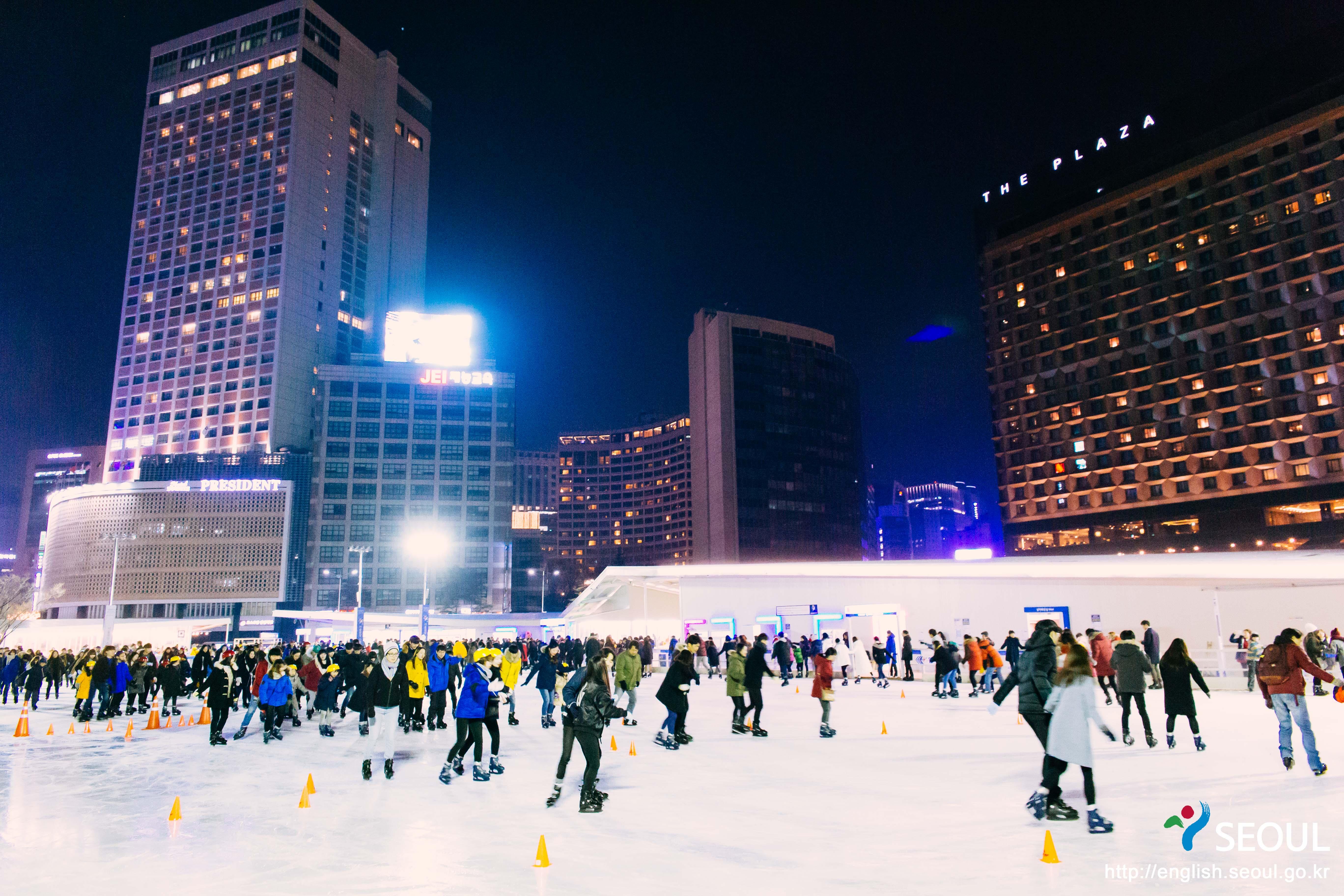 스케이트4