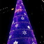 首尔圣诞树