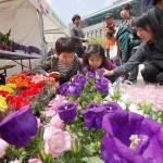 """在首尔广场举办""""春花与春树分享市集"""""""