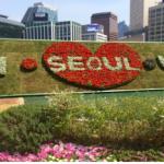 首尔市厅,万紫千红总是春!