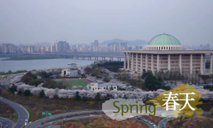 首尔的四季