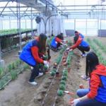 『首尔市外国人留学生志愿服务团队』第5期招募概要