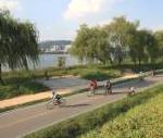 约会最佳地点!踏着自行车,迎风在汉江边