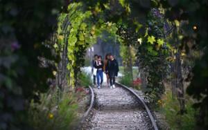 首尔绿地添新秀,三大城市公园即将开放
