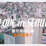 [Love in Seoul] 鹭梁津水产市场体验