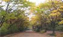 西大门区鞍山公园