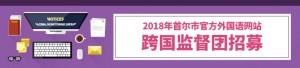 2018年首尔市代表外国语网站国际监督团招募