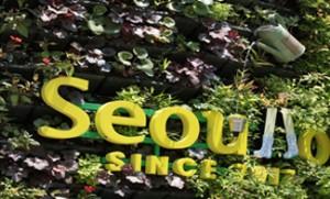 为迎接夏天到来,首尔路7017遮阳面积扩增3倍