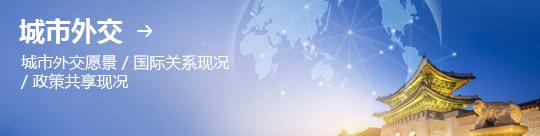 城市外交 → 城市外交愿景 / 国际关系现况 / 政策共享现况