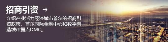 招商引资 → 介绍产业活力经济城市首尔的招商引资政策、首尔国际金融中心和数字创造城市据点DMC。