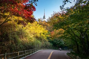 首尔的秋日风光,南山公园