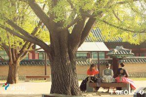 """首尔市在中国当地举办""""特色旅游体验展"""" newsletter"""