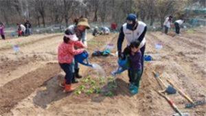 首尔市2月1日起开放7090块环保周末农场认领