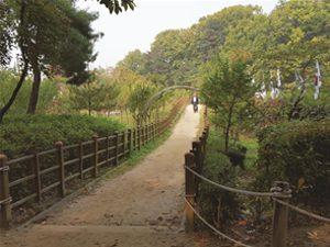 首尔市四年内开辟150个主题散步路,发行四本书