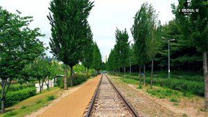 【全视角的首尔】京春线林道