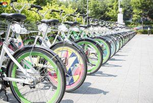 """朴元淳市长发表""""以人为本的自行车革命""""宣言,构建四通八达的""""自行车高速公路"""""""