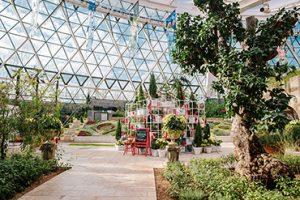 首尔植物园冬季花园庆典