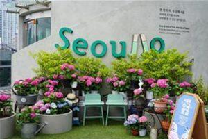 首尔路7017,在百花盛开的路上享受秋季散步