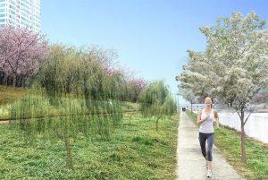 """推进建造""""城市风路林"""",为城市注入山林的清新舒爽空气"""