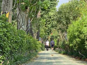 40万株树木打造首尔市68条多层植栽林荫街,降低微尘,提高步行便利