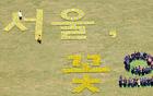 [元淳的希望日记121] 首尔,鲜花绽放