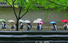 [元淳的希望日记174] 气象厅称明日很有可能会下雨