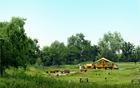 炎热的夏天,前往首尔的公园露营场!