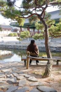 南山谷传统庭院