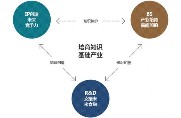 培育知识基础产业